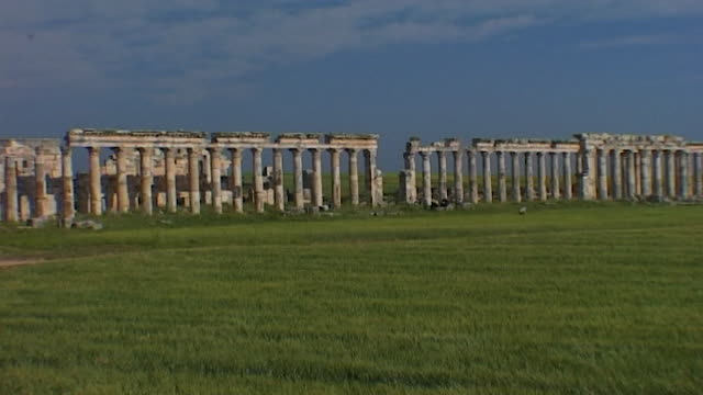 wide view of the great colonnade at the archaeological site of apamea the grecoroman city of apamea was completely looted and gutted in the syrian... - ruine stock-videos und b-roll-filmmaterial