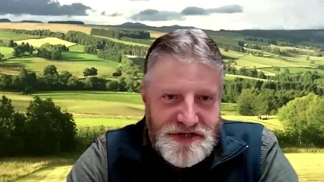 wild beavers in scotland at centre of rewilding row; scotland : int martin kennedy interview via internet sot. - beaver stock videos & royalty-free footage