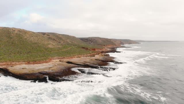 vilda kusten - blåshål djurkroppsdel bildbanksvideor och videomaterial från bakom kulisserna