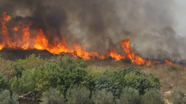 wild fires rage across israel - destruction stock videos & royalty-free footage