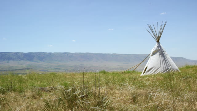 vídeos de stock e filmes b-roll de wild grasses blow in the wind in front of a native american teepee near casper, wyoming with mountains in the background under a clear, sunny sky - cultura tribal da américa do norte