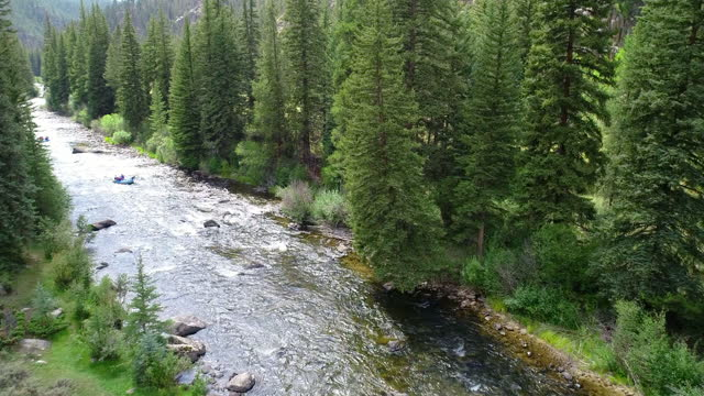 wild river in the summer with tall lush trees with river rafts - colorado stock videos & royalty-free footage