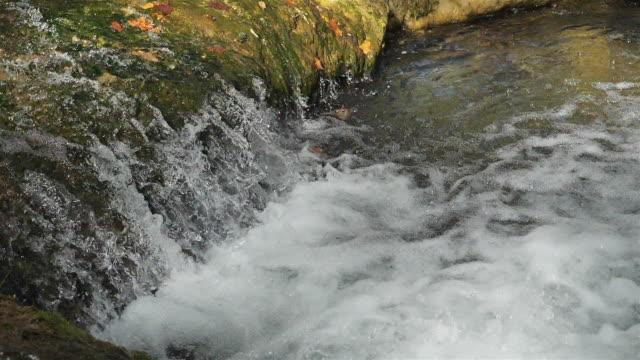 wild river . splashing fresh water. - モンペリエ点の映像素材/bロール