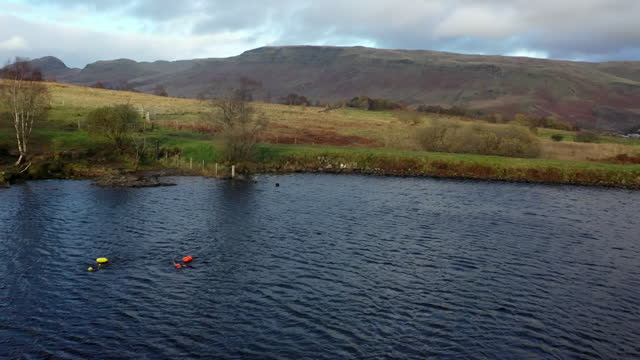 wild swimming in stirlingshire lake - audio available stock videos & royalty-free footage