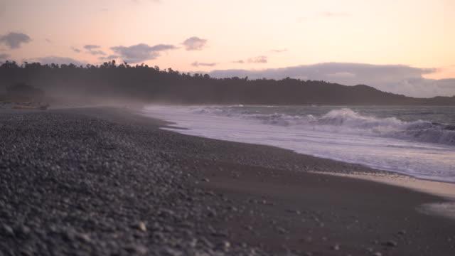 ニュージーランドのワイルドウエストコーストビーチ。 - ネズミイルカ点の映像素材/bロール