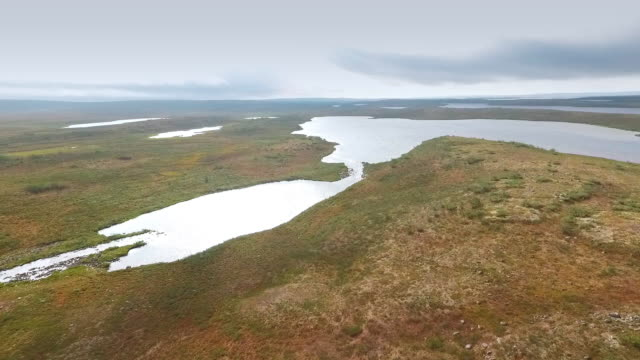 wildnissee in lappland - nationalpark stock-videos und b-roll-filmmaterial