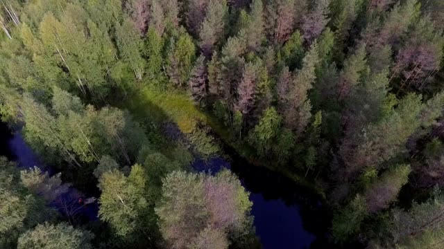 wilderness lake in scandinavia - distillery still stock videos and b-roll footage