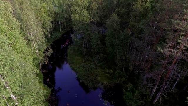 wilderness lake in scandinavia - distillery still stock videos & royalty-free footage