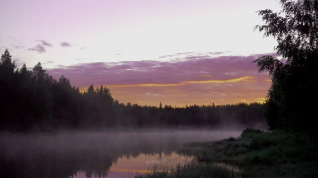 wilderness river in scandinavia night view with fog - distillery still stock videos & royalty-free footage
