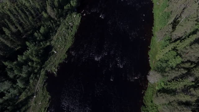 wilderness river in scandinavia - named wilderness area stock videos & royalty-free footage