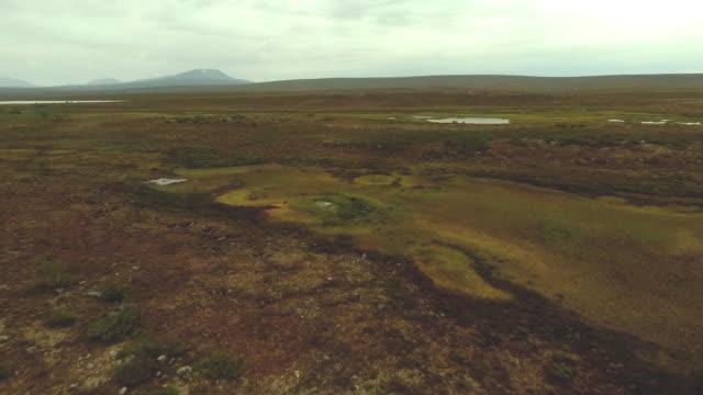 stockvideo's en b-roll-footage met wildernismoeras in de berg lapland - broek