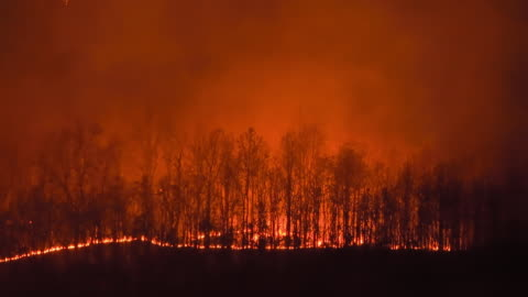 wildfire on the mountain at night - fire natural phenomenon stock videos & royalty-free footage