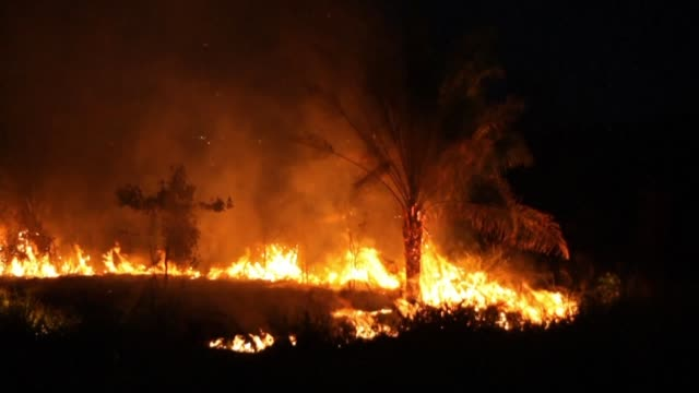 vídeos de stock, filmes e b-roll de wildfires continue to rage in a stretch of brazil's amazon forest near rio branco acre state - amazonas state brazil
