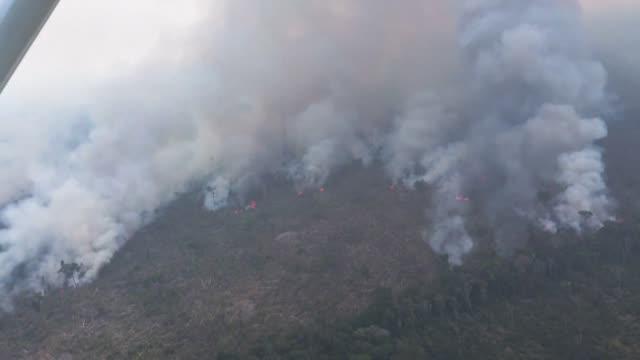 vídeos de stock, filmes e b-roll de wildfires rage in the amazon rainforest about 65 kilometres from rondonia state capital porto velho - amazonas state brazil