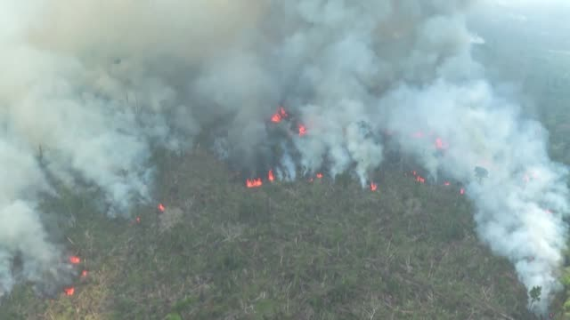 vídeos de stock, filmes e b-roll de wildfires rage in the amazon rainforest in brazil's rondonia state - amazonas state brazil