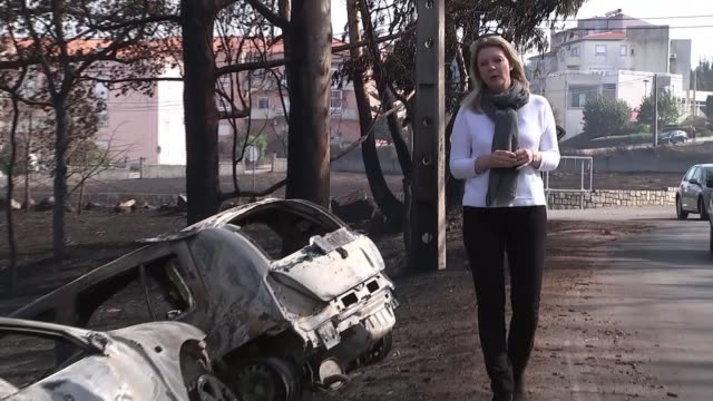 rains douse flames after 37 die; [portugal: ext fire damaged cars amongst burnt trees reporter to camera sot cars passing buildings destroyed by the... - portugal stock videos & royalty-free footage