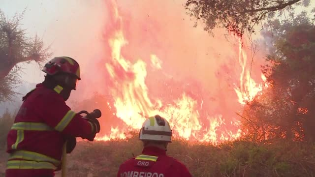 wildfires scorch portugal's southern algarve region as over 1,400 firefighters and soldiers were battling the blaze - portugal stock videos & royalty-free footage