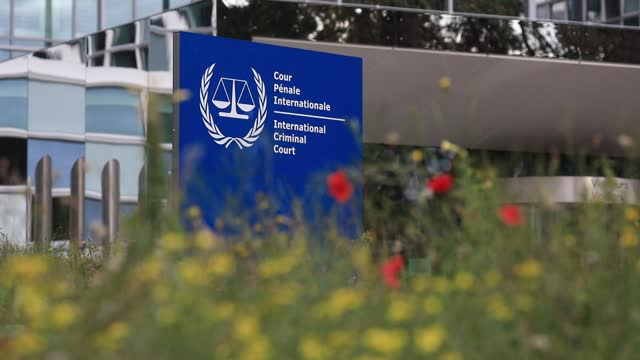 wildflowers move with the wind as background the entrance of the international criminal court building on october 18 in the hague, the netherlands.... - partisan politics stock videos & royalty-free footage
