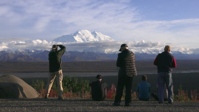 wildlife and scenics of alaska and denali nat'l park - denali national park stock videos & royalty-free footage