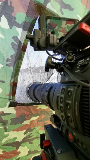 wildlife cinematography and nature lovers. hiding in a refuge of a military tent with a cinema camera, waiting for the animals to show up. wildlife photography and hobbies. eco tourism. - wilderness area stock videos & royalty-free footage