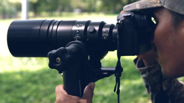 wildlife photographer taking picture - photographer stock videos & royalty-free footage