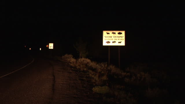 vídeos de stock, filmes e b-roll de zi, ms, wildlife road sign at night, grand teton national park, wyoming, usa - representação de animal