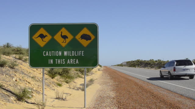 Wildlife sign in Lancelin on Indian Ocean Highway next to road in Western Australia Australia
