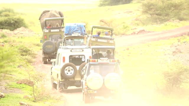 Wildlife viewing in Africa on Ngorongoro Safari Tour