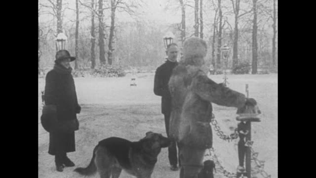 wilhelm with cane and wife hermine walk down path from house into street as dachshund follows snow covers ground and trees on their huis doorn estate... - girls flashing camera点の映像素材/bロール