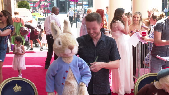 will manning at where is peter rabbit? press day at theatre royal haymarket on july 23, 2019 in london, england. - theatre royal haymarket stock videos & royalty-free footage