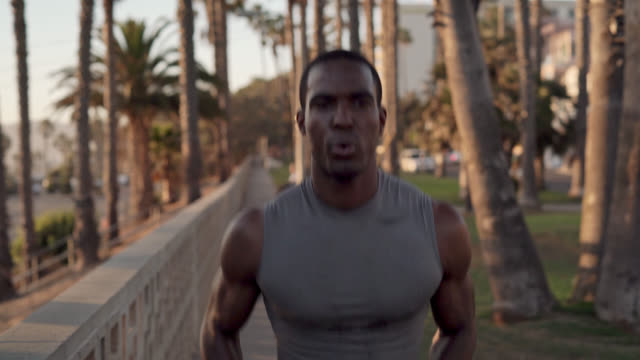 will trained young black man exercising in the park in santa monica, los angeles, usa - santa monica sunset stock videos & royalty-free footage