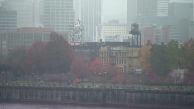 willamette river riverfront 'green' space trees in fall foliage colors in front of old town w/ downtown city buildings in heavy fog bg zo ws cityscape - portland oregon fall stock videos & royalty-free footage