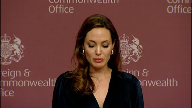 William Hague and Angelina Jolie give press conference Angelina Jolie speech SOT / Louis Susman speech SOT