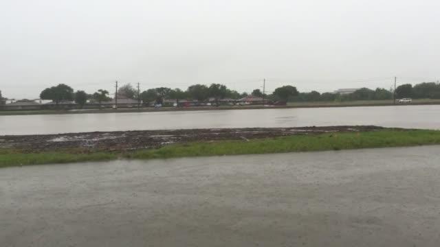 willow waterhole bayou overflows near construction. - waterhole stock videos & royalty-free footage