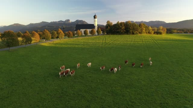 wilparting church, bavaria, germany, europe - baviera video stock e b–roll