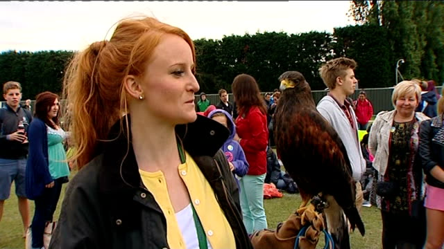 Rufus the hawk returned to owner Imogen Davis interview SOT We're ecstatic we're overwhelmed by all the lovely mesages we've had and the suppoprt...