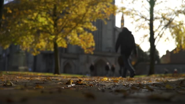 winchester cathedral on autumnal day - cathedral stock videos & royalty-free footage