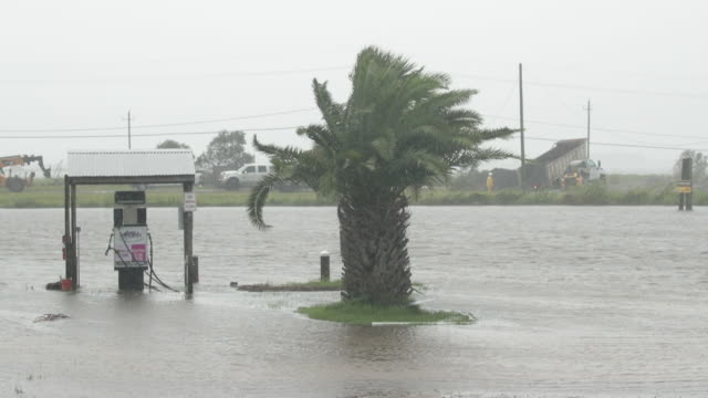 wind and rain from one of the outer bands of tropical storm barry beats down on a flooded marina on july 14 2019 near myrtle grove louisiana the... - flapping stock videos & royalty-free footage
