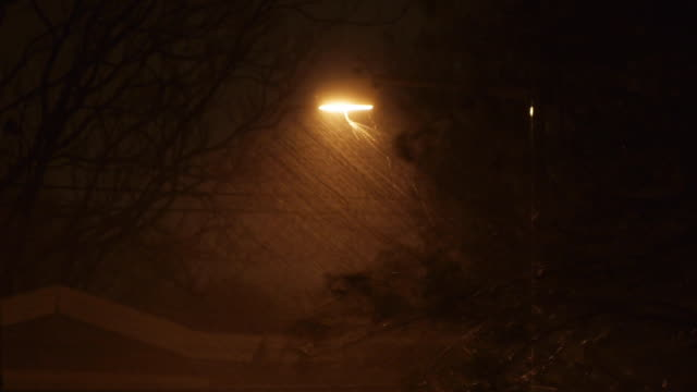 Wind and rain lash trees in front of street lamp on October 29 2012 in Washington DC