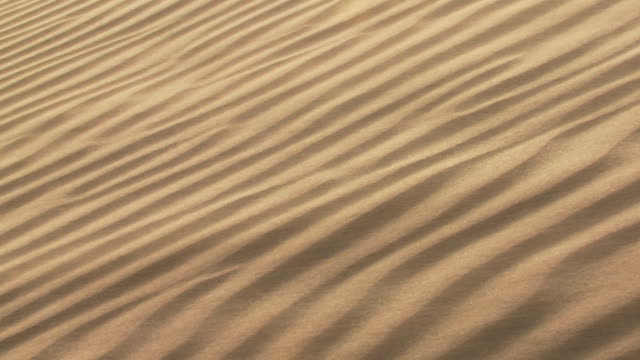 CU Wind blowing across rippled sand dune / San Pedro de Atacama, Norte Grande, Chile