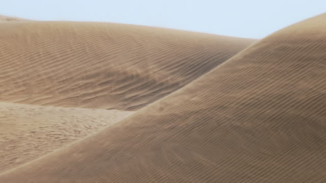vidéos et rushes de wind blowing sand across gobi desert dunes - désert de gobi