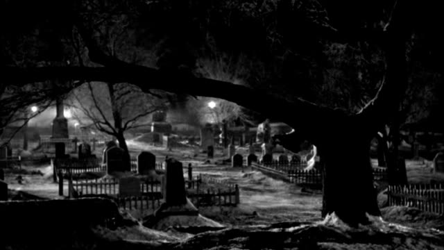wind blows a light scattering of snow across an cemetery at night. - cemetery stock videos & royalty-free footage