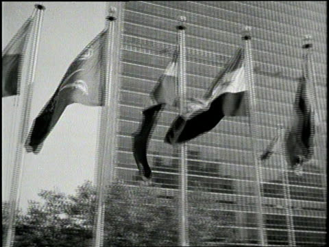 wind blows flags in front of the united nations building in new york city. - anno 1952 video stock e b–roll