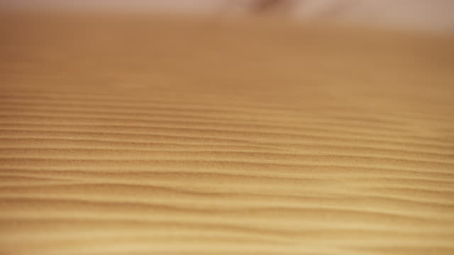 Wind blows sand over desert dune, UAE