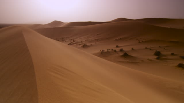 wind blows sand over desert dune, uae - sand dune stock videos and b-roll footage