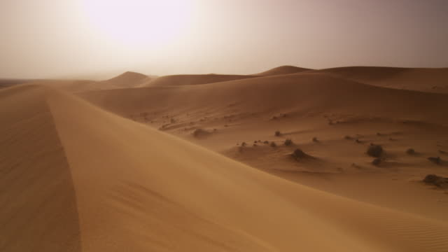 vidéos et rushes de wind blows sand over desert dune, uae - sable
