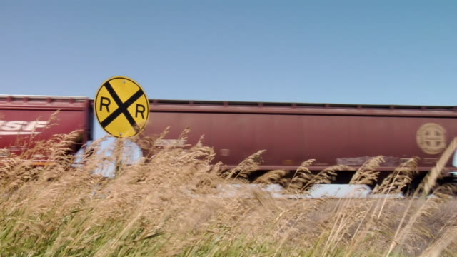 Wind blows through a wheat field as a train passes by.