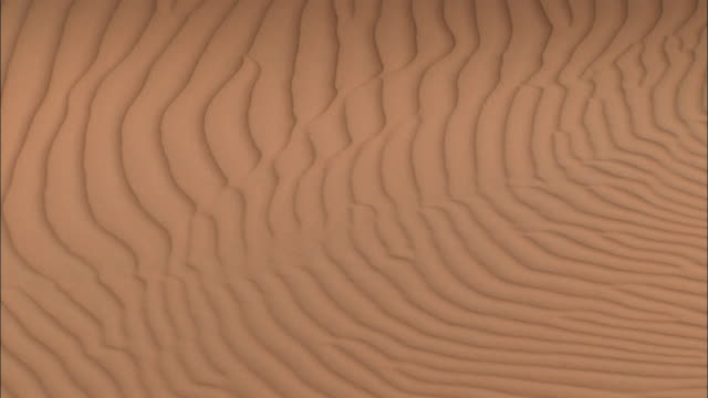 Wind creates ripples in desert sand. Available in HD.