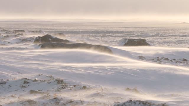 wind driven snow on tundra, canada - arktis stock-videos und b-roll-filmmaterial