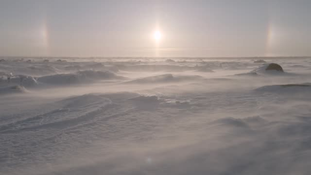 wind driven snow on tundra, canada - blizzard stock videos & royalty-free footage